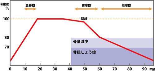骨密度・骨劣化グラフ