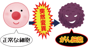 がん細胞は正常な細胞が突然変異したもの