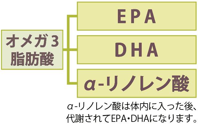 オメガ3脂肪酸の種類