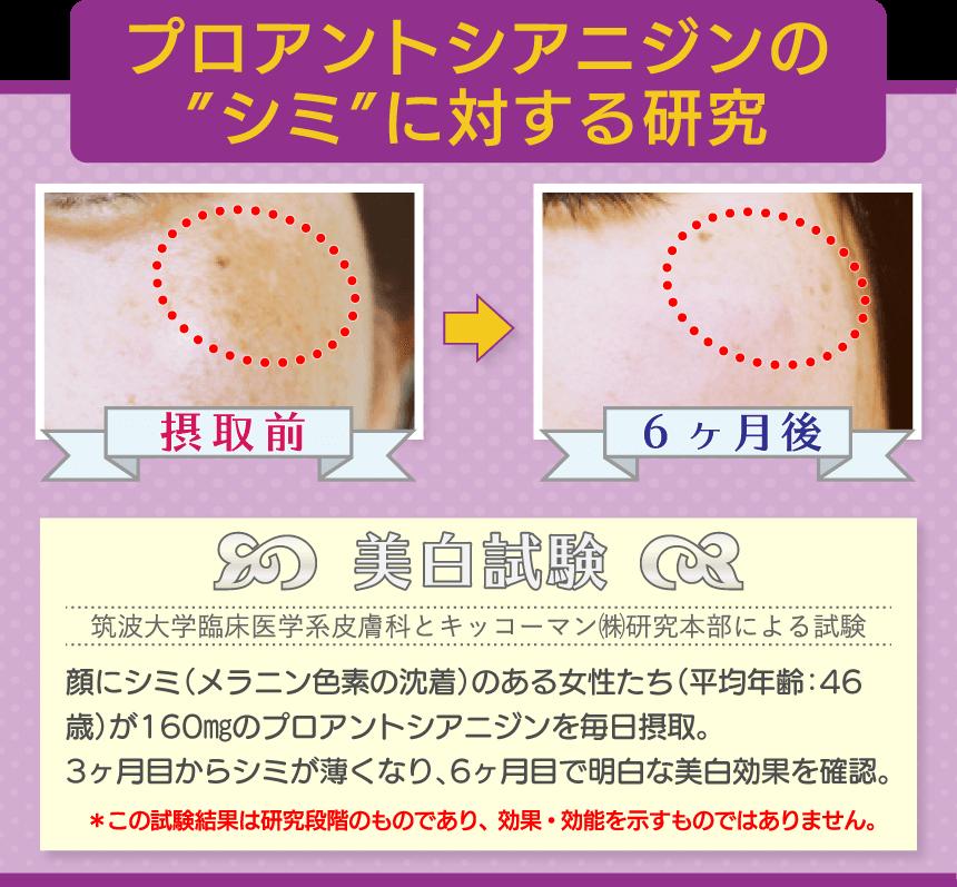 """プロアントシアニジンの""""シミ""""に対する研究"""