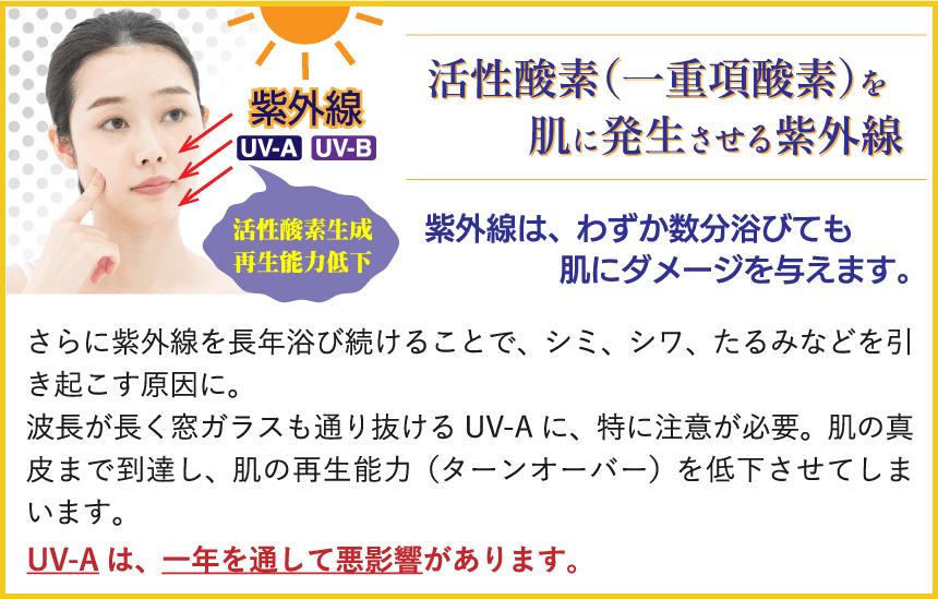 活性酸素(一重項酸素)を肌に発生させる紫外線