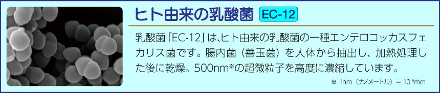 ヒト由来の乳酸菌(EC-12)