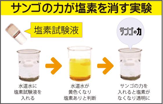 塩素を消す実験