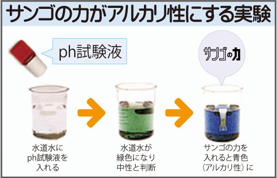 アルカリ性にする実験