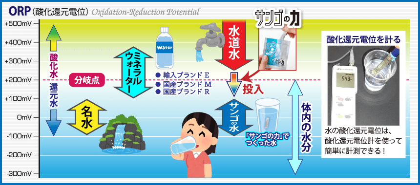 水の酸化還元電位(ORP)