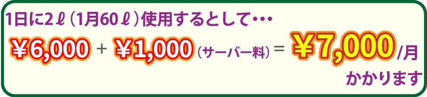 1日に2リットル(1ヶ月60リットル)使用するとして・・・: 6,000円+サーバー料1,000円=1ヶ月7,000円かかります。